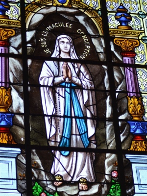 Commemoration – Feast of the Immaculate Conception | Religious Profession SNJM